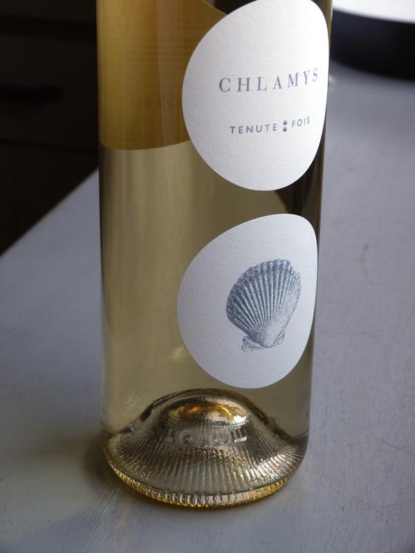 chlamys-fois